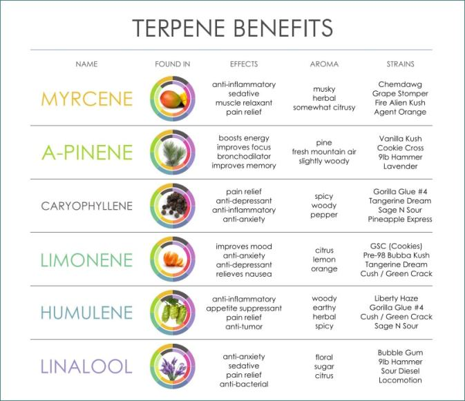 cannabis-terpene-benefits